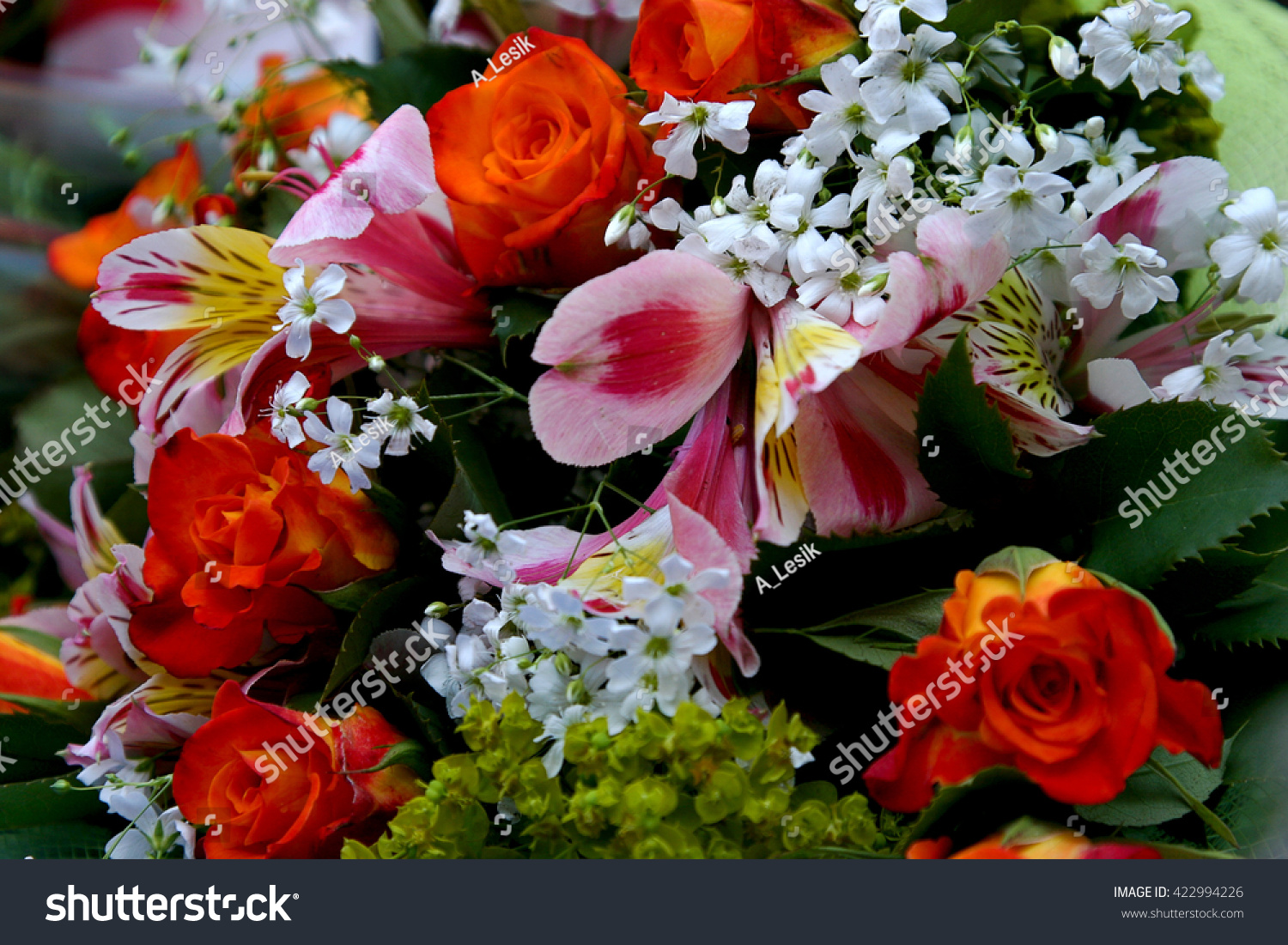 Bright Colorful Bouquet Flowers Beautiful Cellophane Stock