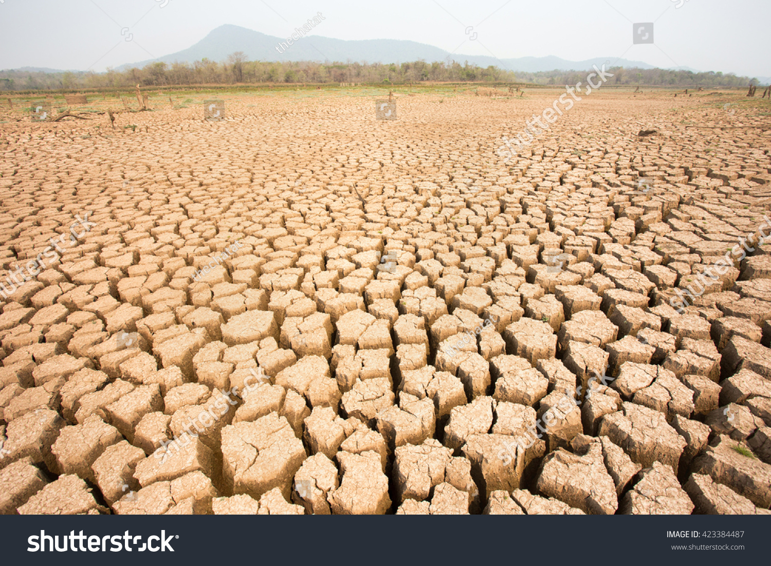 Arid Soil Cracks Stock Photo 423384487 - Shutterstock