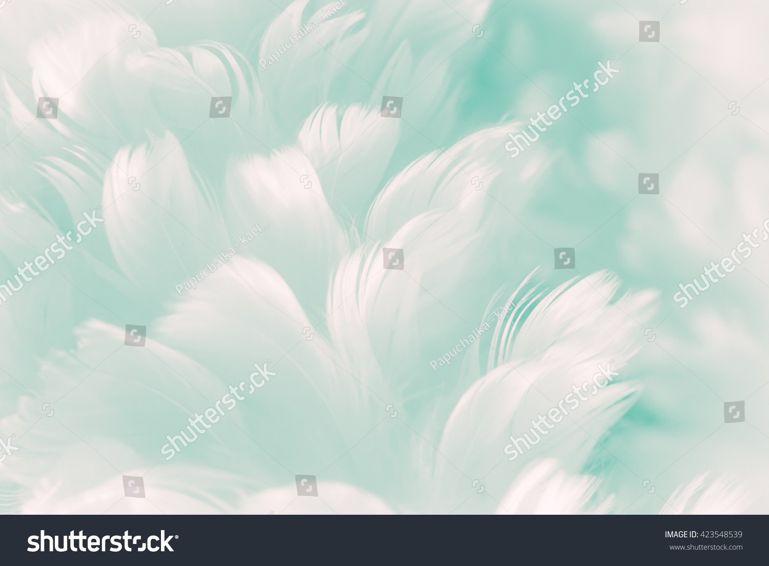 White fluffy feather closeup - pale Tiffany blue to robin egg greenish color background - and new coming Jade Evanescence color of Fashion Color Trends - Spring Summer 2017 #423548539