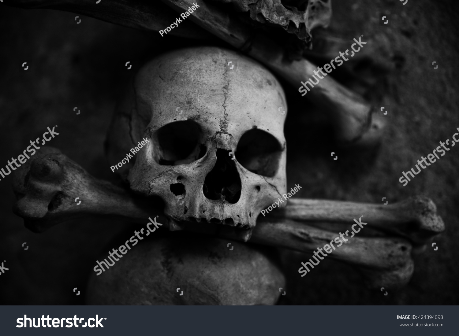 Crazy Scary Collection Skull Bones Stock Photo Edit Now 424394098