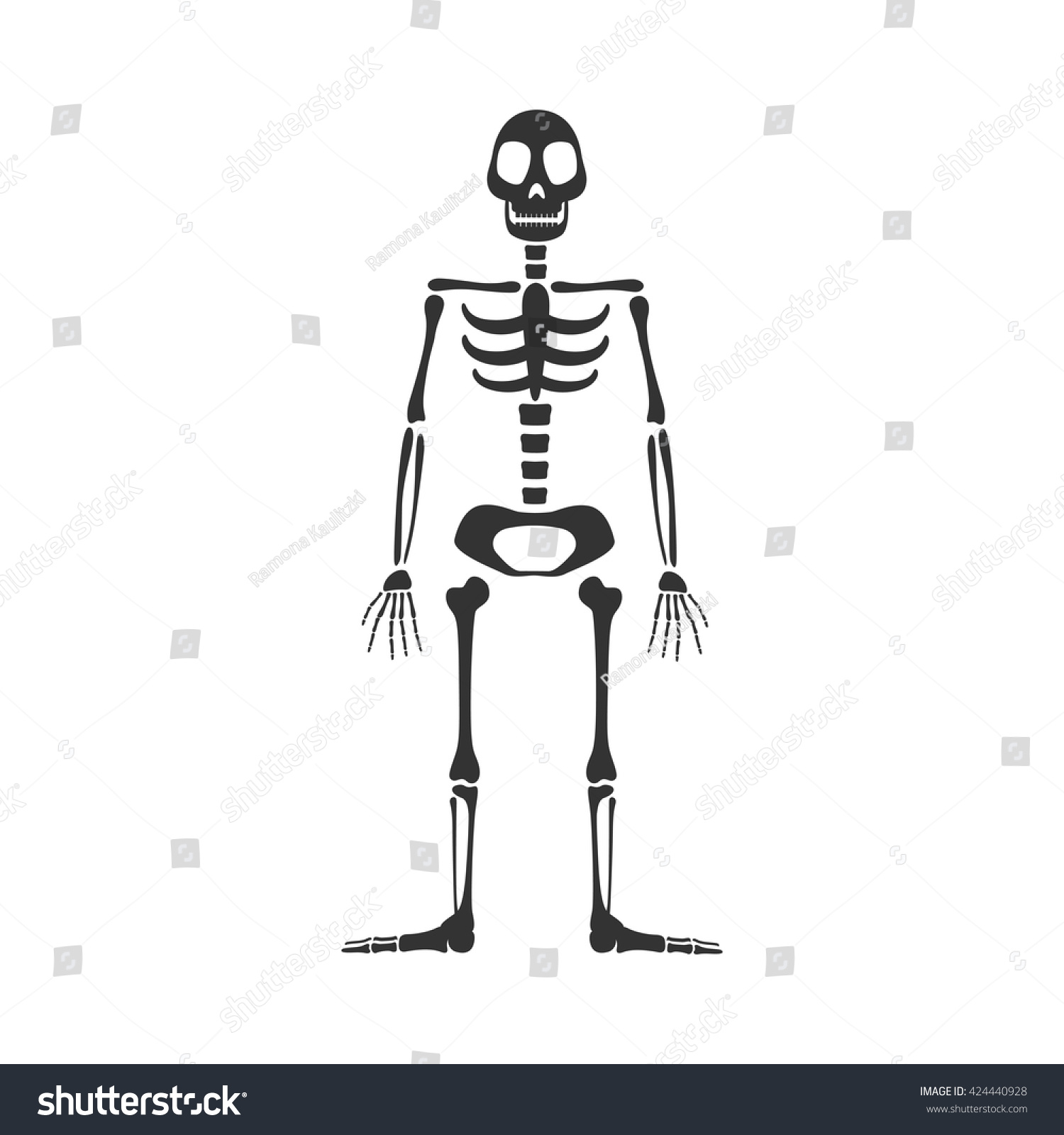 Vector Illustration Skeleton Stock Vector 424440928 - Shutterstock