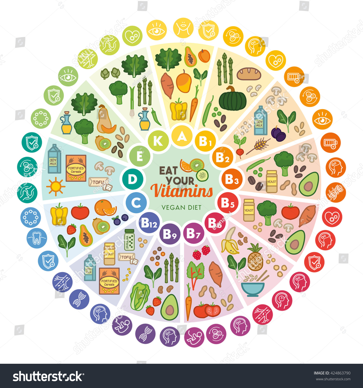 Vitamin vegan food sources functions rainbow stock vector vitamin vegan food sources and functions rainbow wheel chart with food icons healthy eating nvjuhfo Images