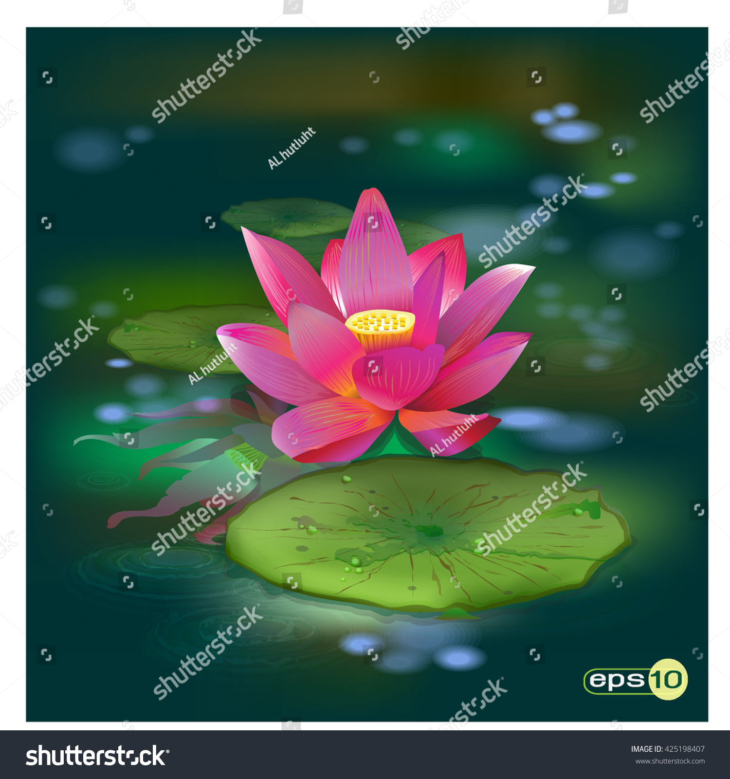 This Beautiful Waterlily Lotus Flower Complimented Stock Vector