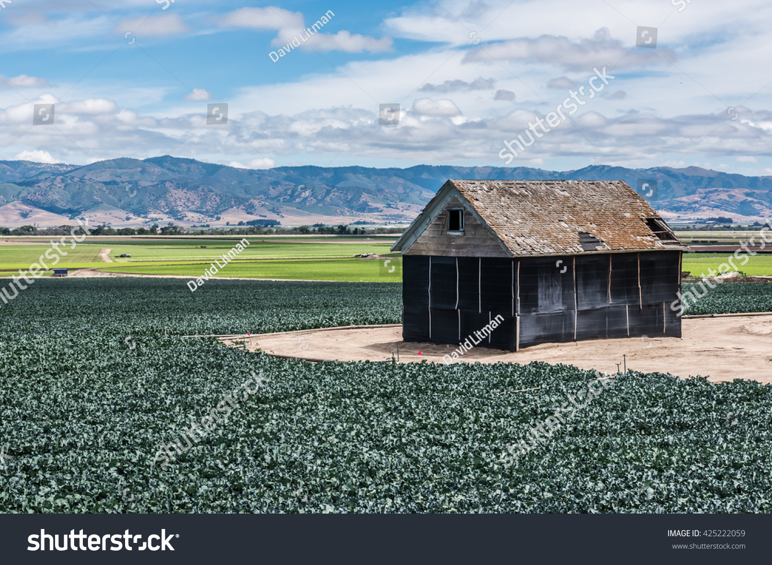 Old barn on farm land. with agricultural crops, background mountains and white clouds in the sky in Salinas Valley of Central California.