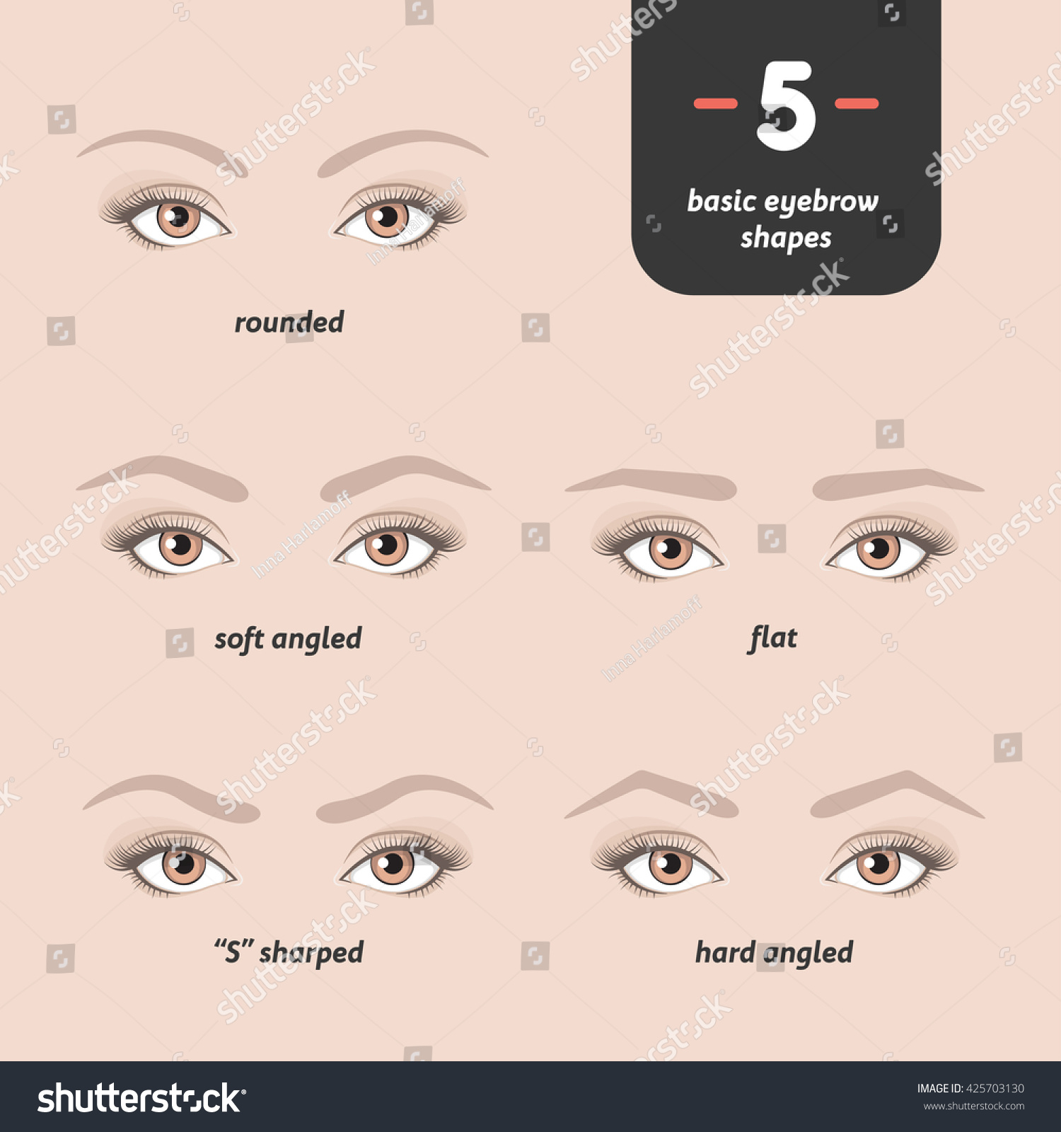 5 Basic Eyebrow Shapes Various Types Stock Vector Royalty Free