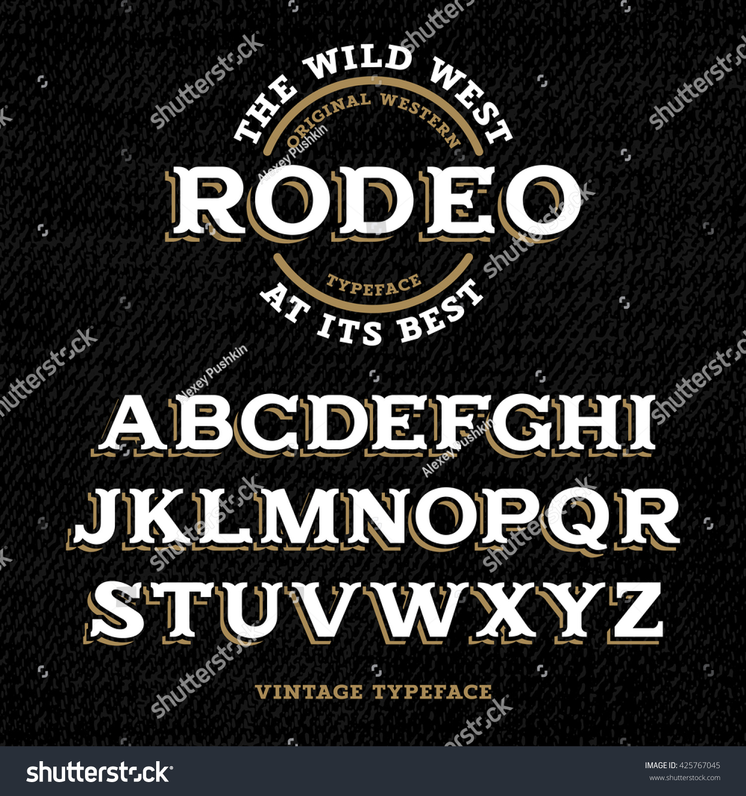 670774347 Wild West typeface   Retro alphabet in western style   Slab Serif type  letters on a