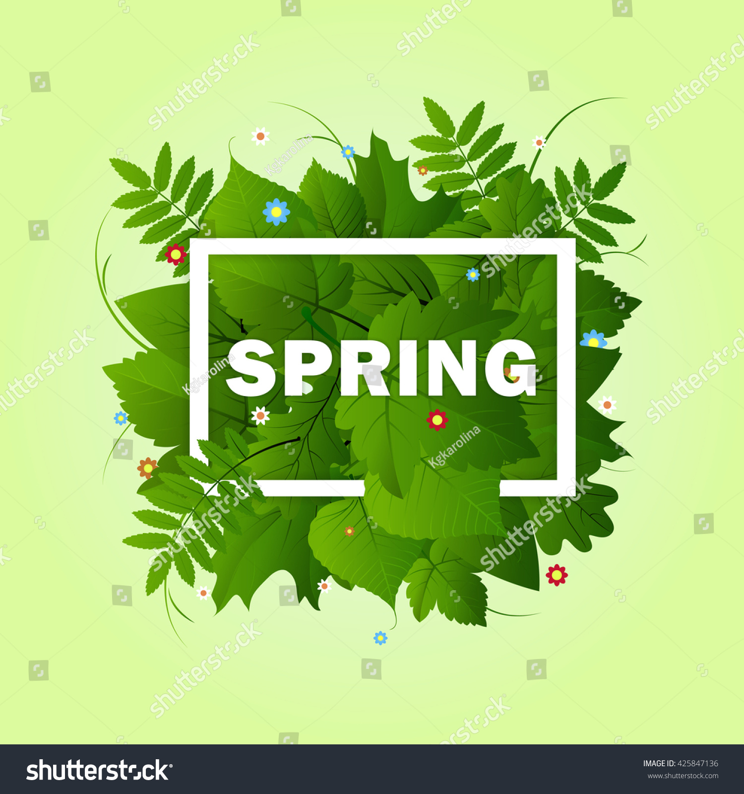 Spring Green Leaves And Flowers Background With Plants: Spring White Frame Green Different Leaves Stock Vector