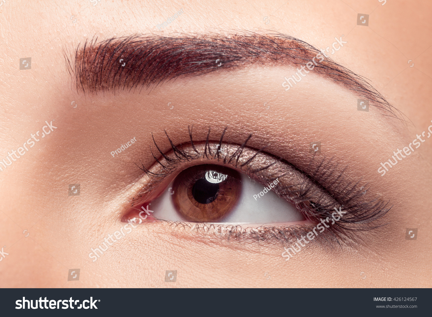 Closeup Beautiful Woman Eye Brown Makeup Stock Photo Edit Now