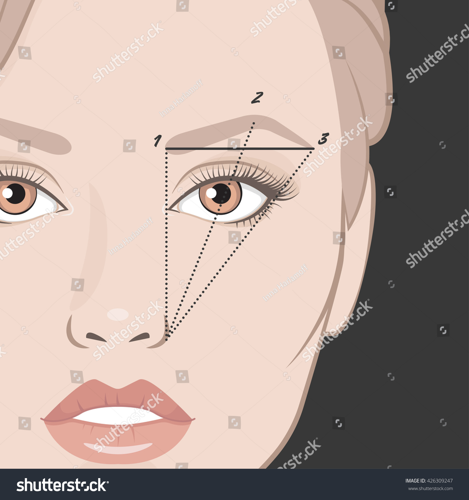 Vector Illustration Woman Face Eyebrow Mapping Stock Vector ...