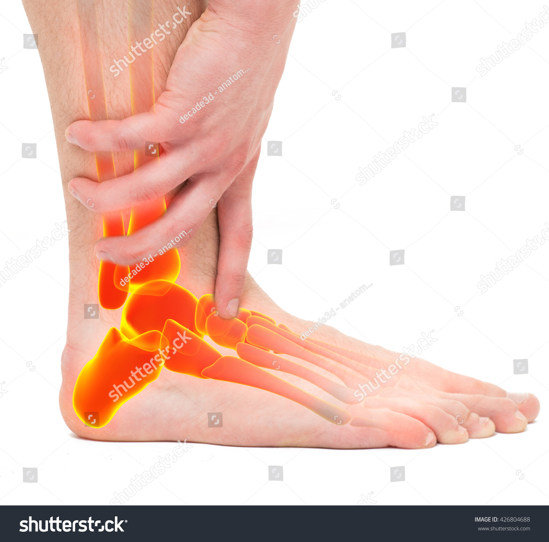 Twisted Ankle Man Holding Leg Anatomy Stock Photo (Edit Now ...