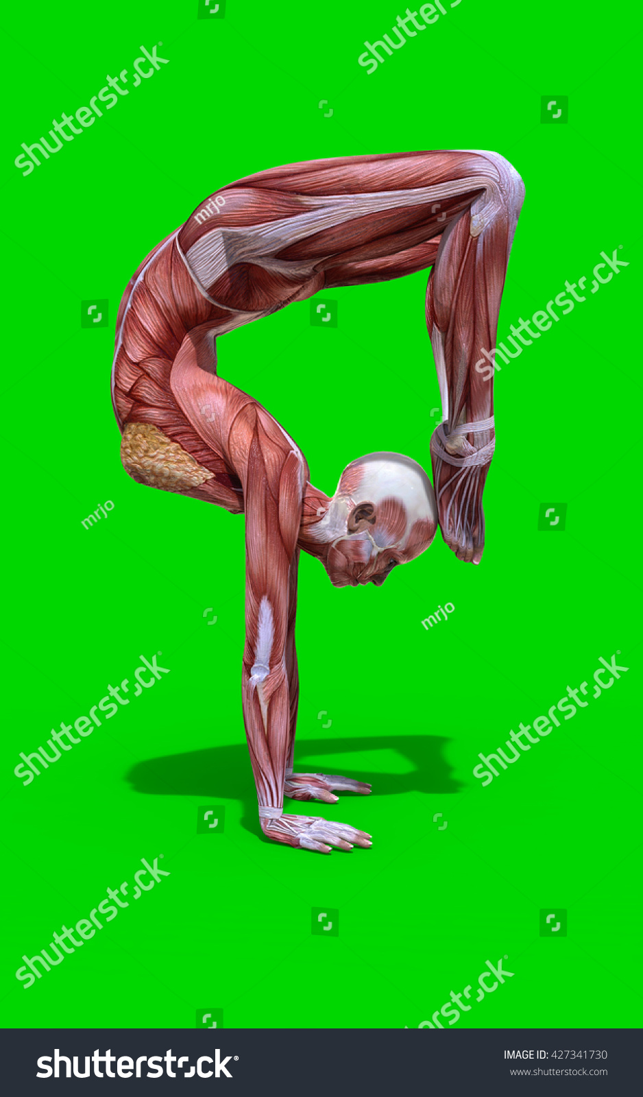 3 D Digital Render Scorpion Pose Female Stock Illustration 427341730 ...