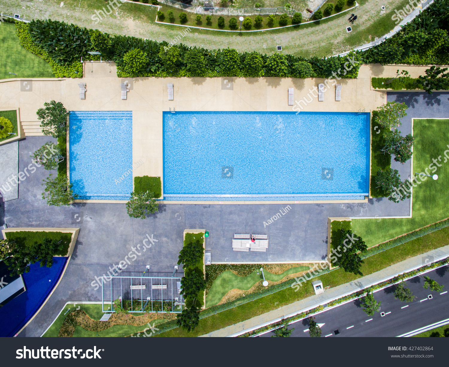 top down aerial view of rectangle swimming pool - Rectangle Pool Aerial View