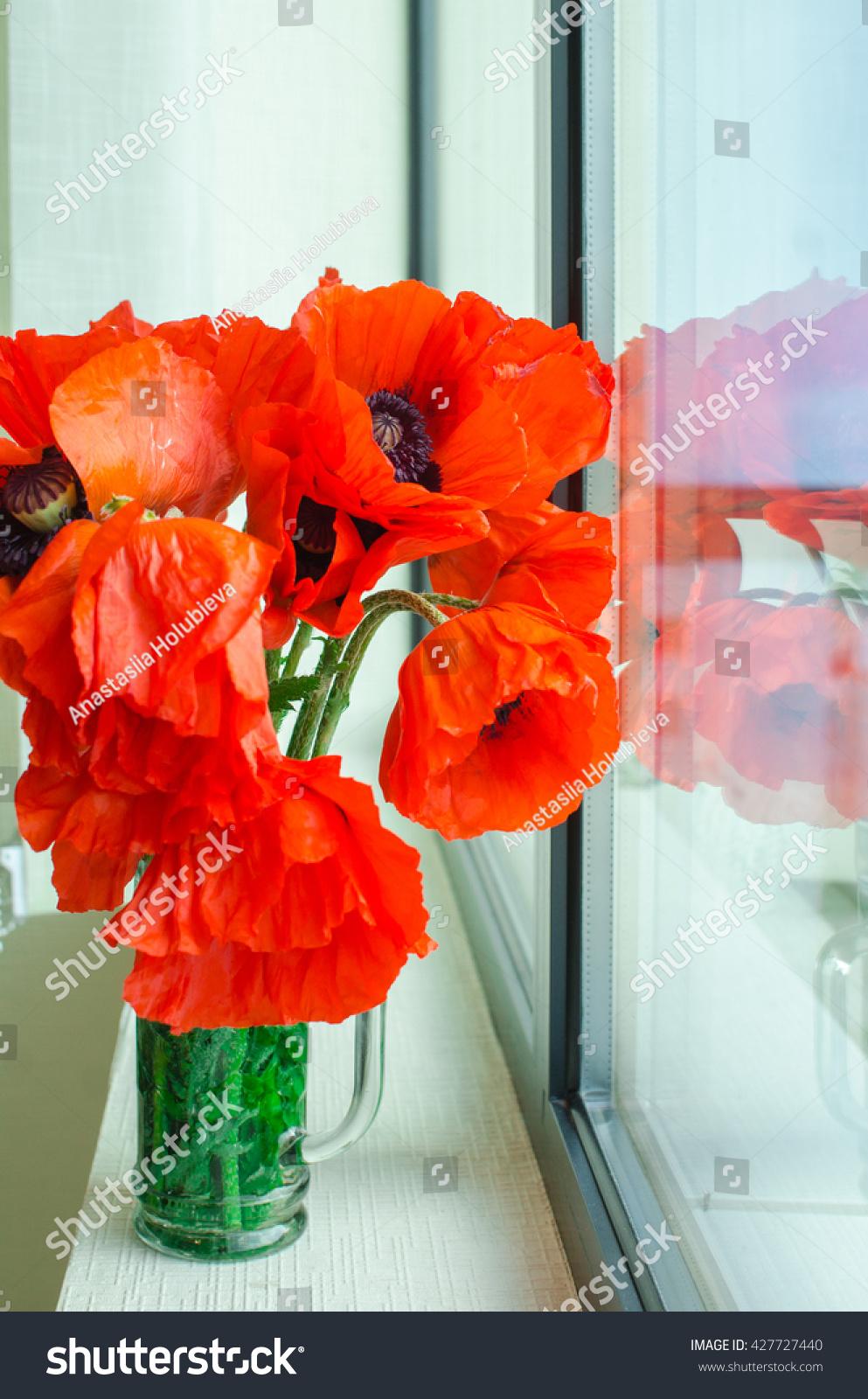 Bouquet Wild Poppies Bouquet Poppies Vase Stock Photo Edit Now