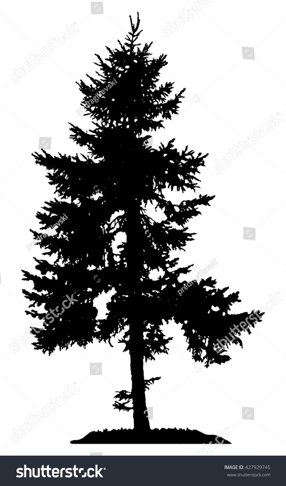 pine tree silhouette stock vector 427929745 shutterstock vector pine trees free vector images of pine trees