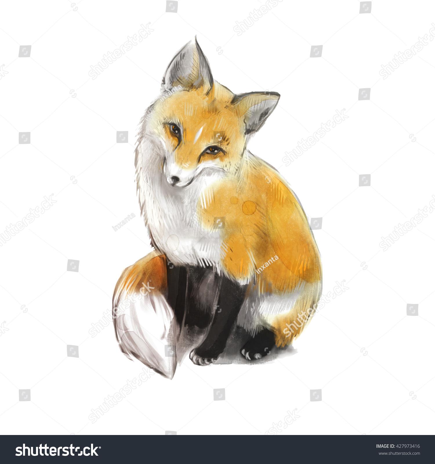 very nice cute fox fox sitting stock illustration 427973416