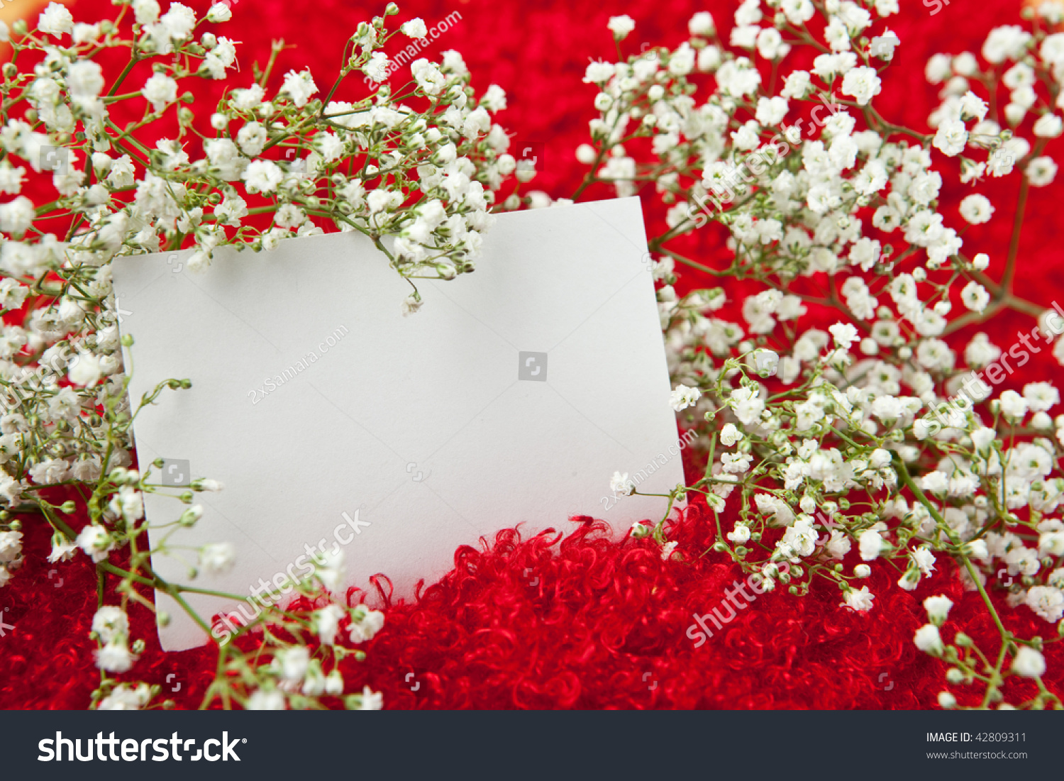 Blank invitation card white flowers on stock photo 42809311 blank invitation card in white flowers on shaggy red fabric stopboris Images
