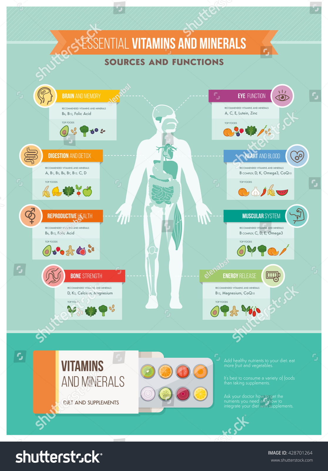 the importance of nutrition to the human body The nutrients in vegetables are vital for health and maintenance of your body  eating a diet rich in  washington, dc why is it important to eat vegetables.