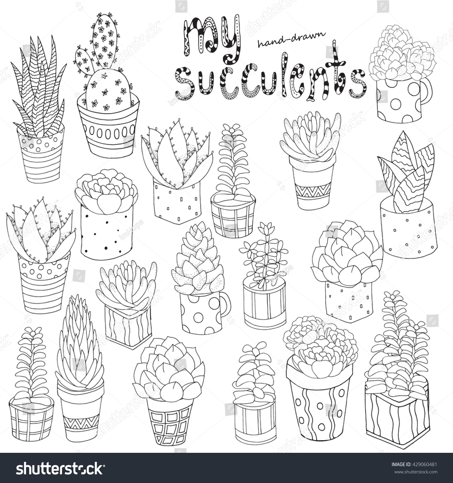 Botanical art coloring book - Hand Drawn Set Of Succulents Cactuses And Pots Doodles Elements Black And White