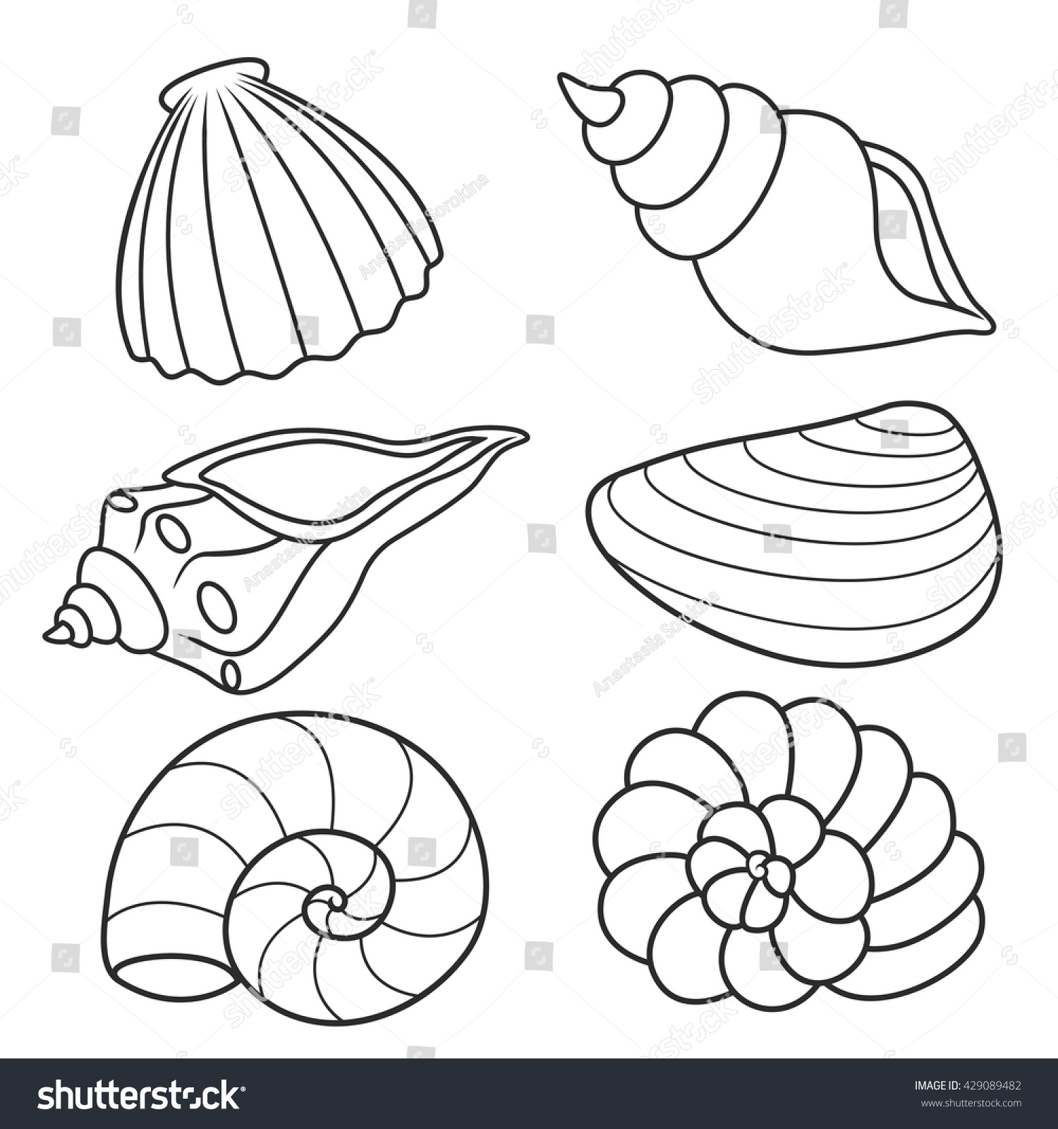 Seashells Coloring Bookset Stock Vector 429089482 ...