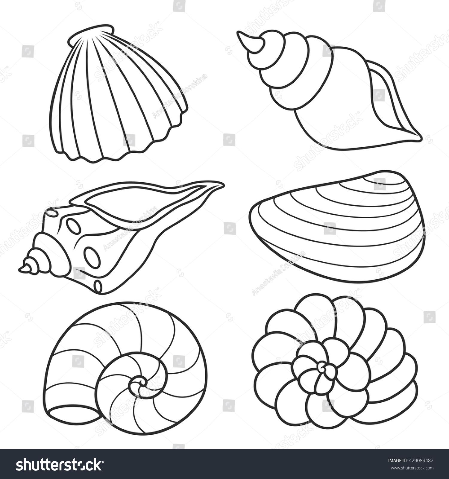 Seashells Coloring Bookset Stock Vector 429089482 ...