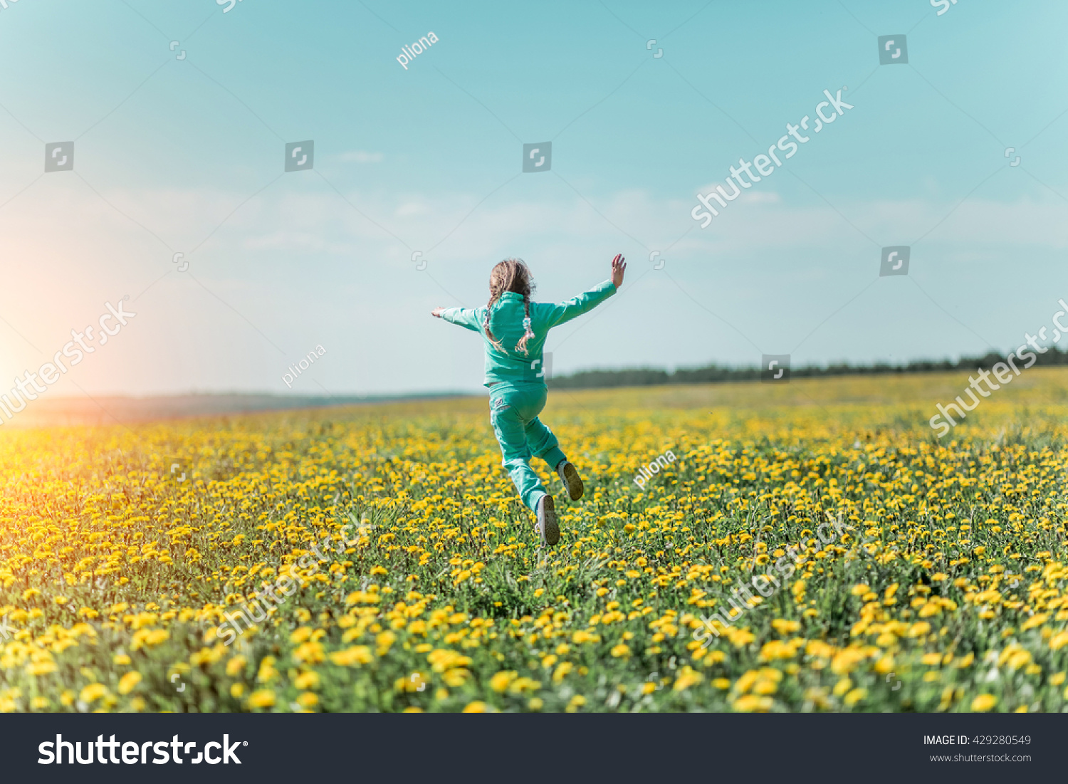 Little Girl Field Flowers Summer Stock Photo Royalty Free