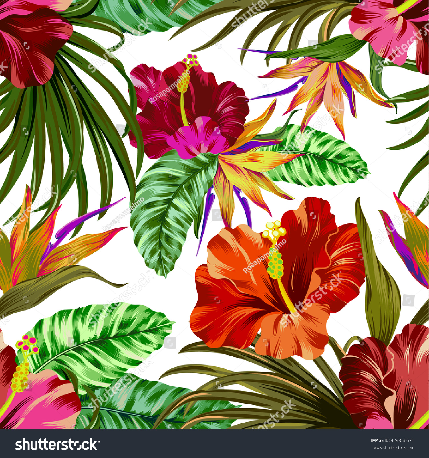 Royalty Free Amazing Vector Tropical Flowers Pattern 429356671