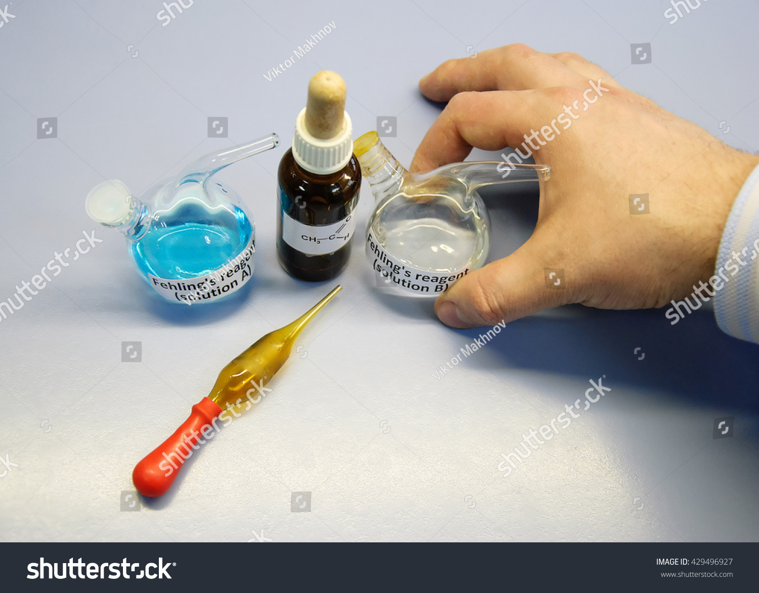 Scientist going to carry out an experiment using Fehling's A and Fehling's B solutions