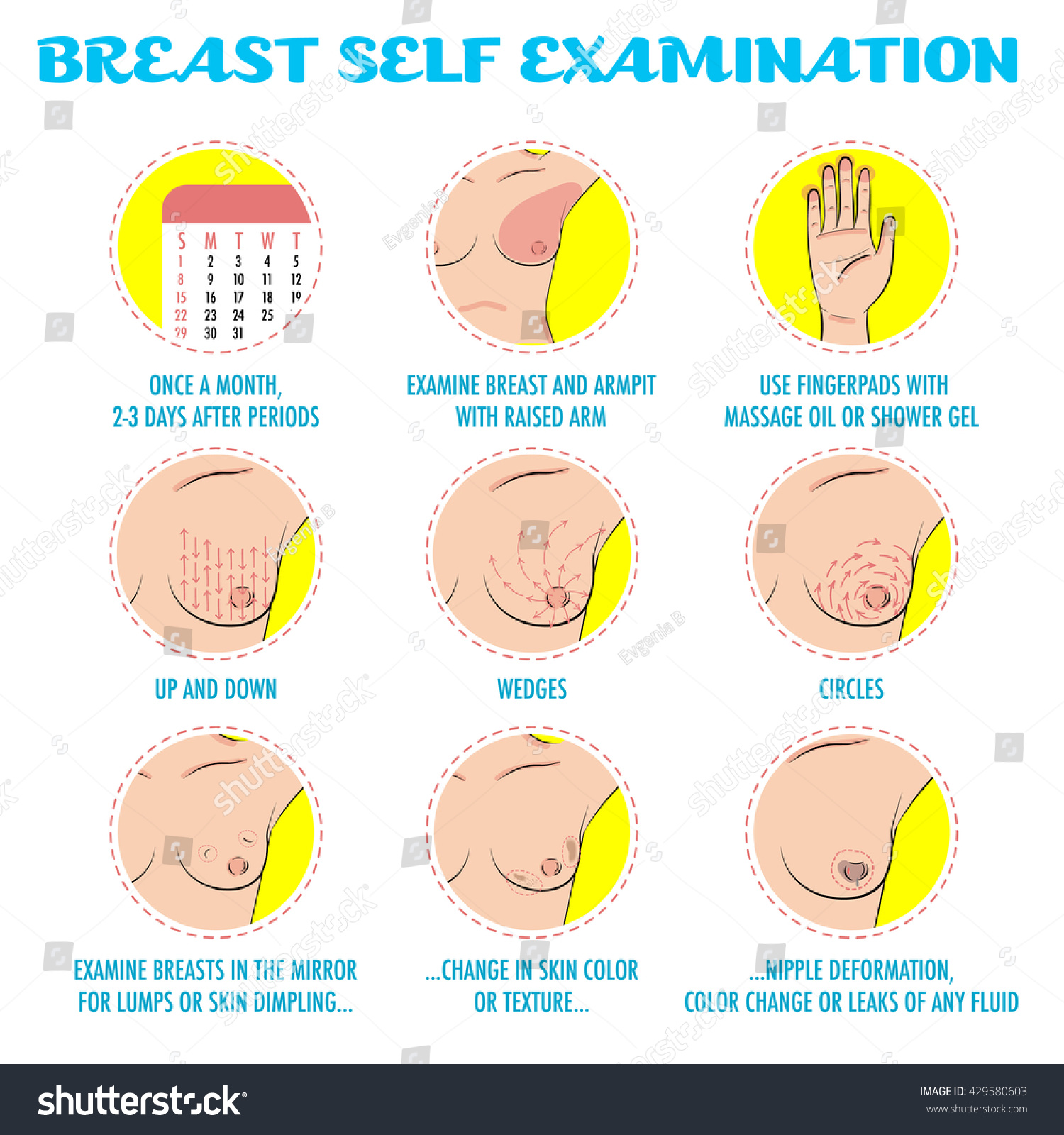 breast self exam breast cancer monthly stock vector  breast self exam breast cancer monthly examination infographics symptoms of breast cancer or tumor