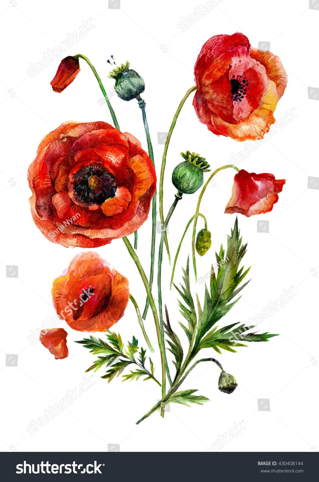 watercolor flowers bouquet handdrawn vintage red stock