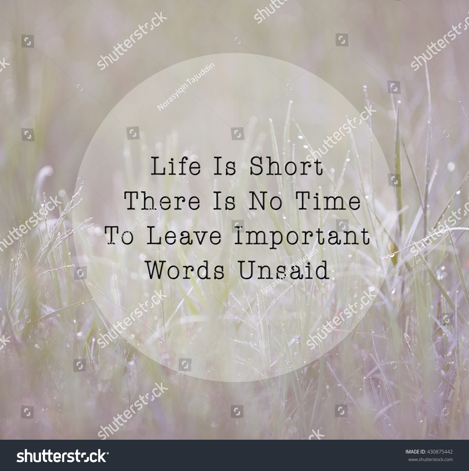 Short Inspirational Life Quotes Inspirational Life Quote Phrase Life Short Stock Photo 430875442