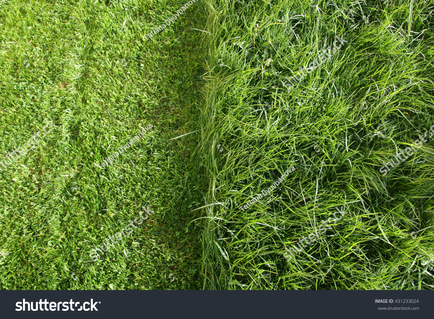 how to cut very long grass