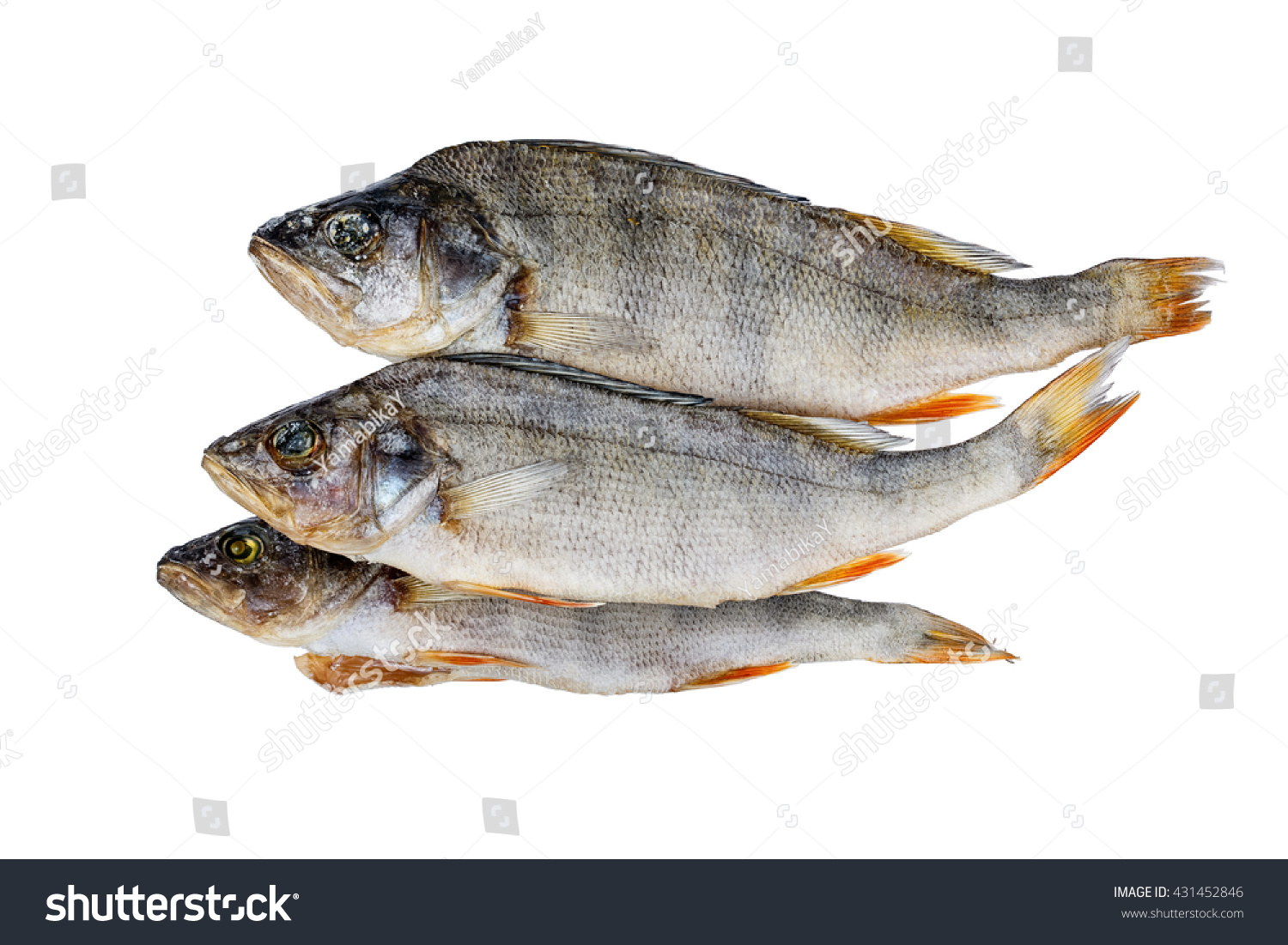 Dried Fish Perch Stock Photo 431452846 - Shutterstock for Dried Fish Clipart  75sfw