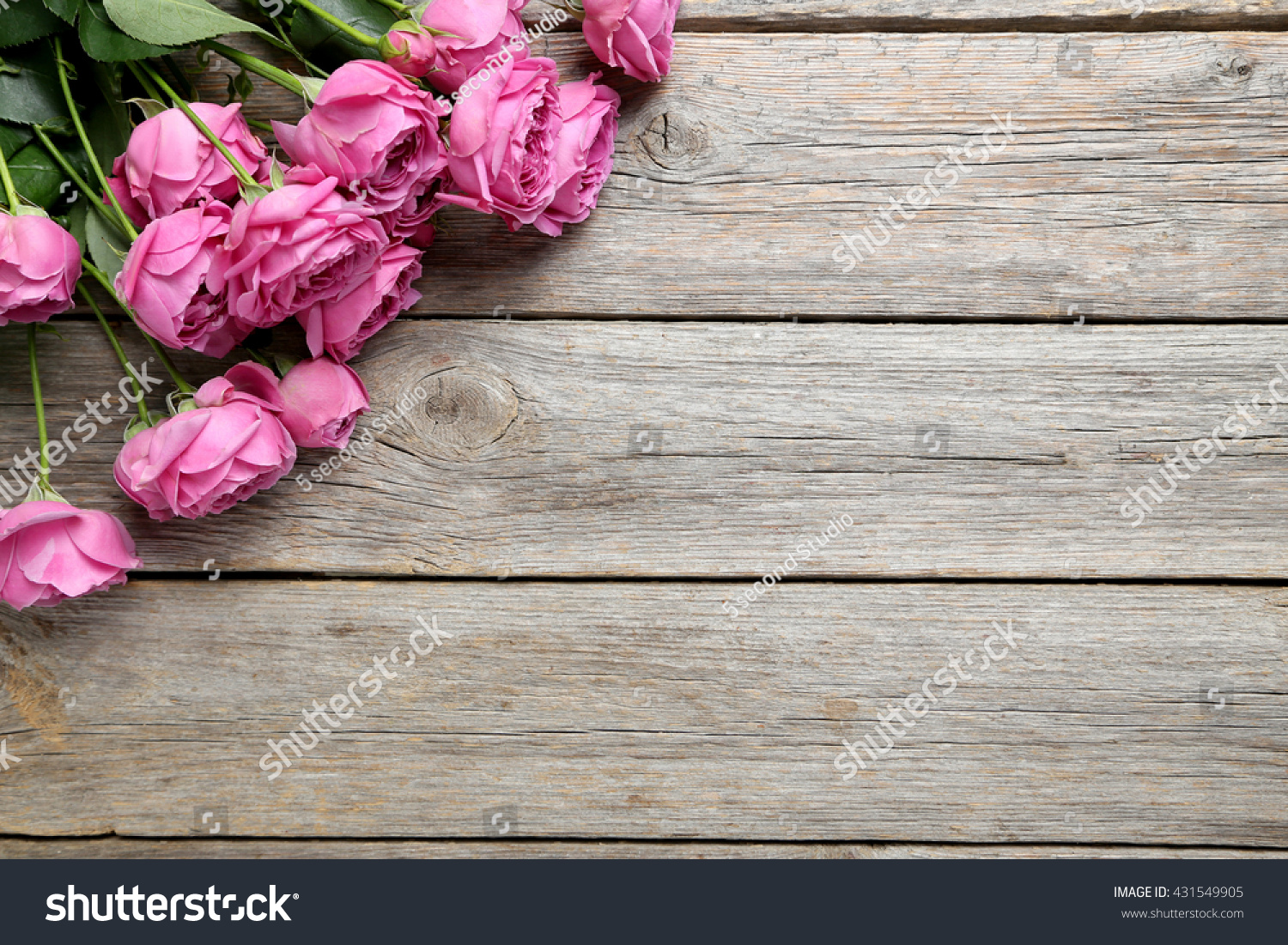 Beautiful Pink Roses On Grey Wooden Stock Photo 431549905
