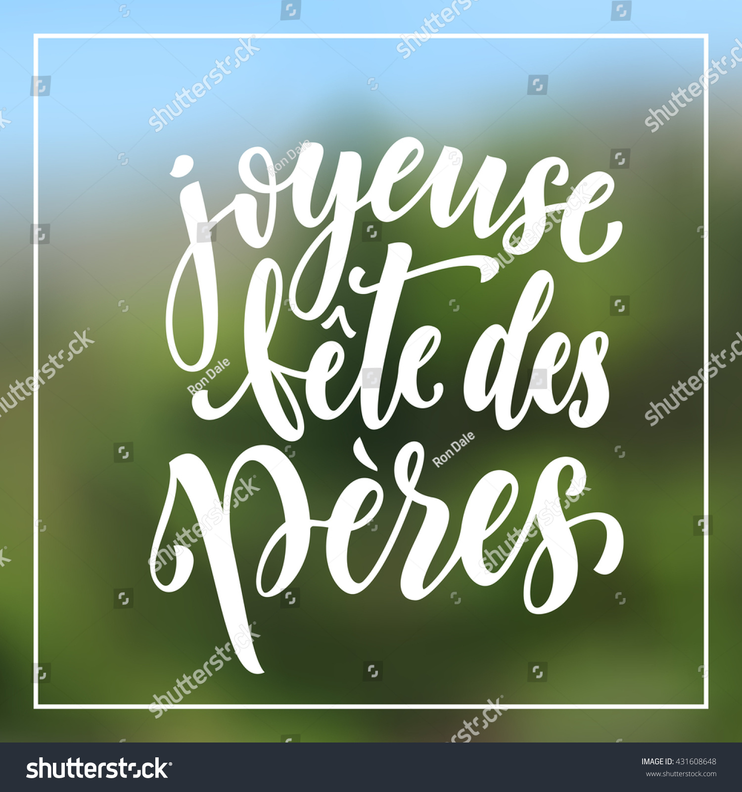 joyeuse fete des peres vector greeting stock vector 431608648 shutterstock. Black Bedroom Furniture Sets. Home Design Ideas