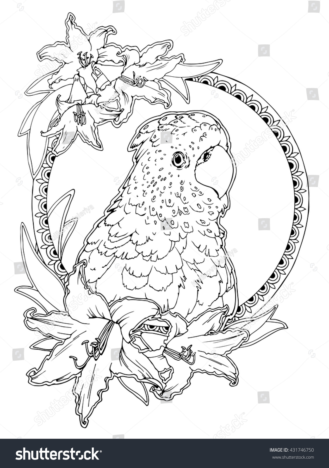 coloring page adults antistress drawing tropical stock vector