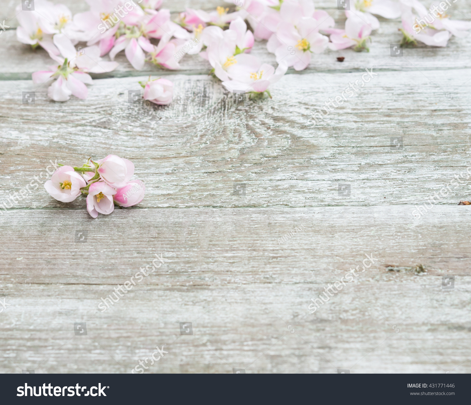 Flowers Apple Tree Blossoms On Rustic Stock Photo Edit Now 431771446