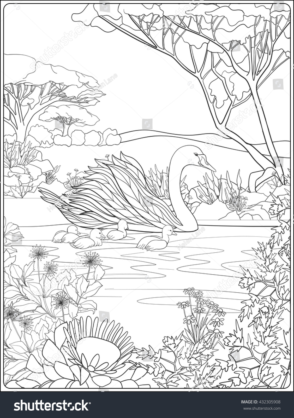Coloring Book For Adult And Older Children Page With Lovely Mother Swan Her