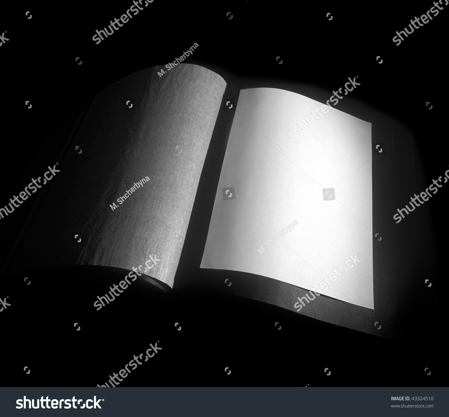 Blank Space: Photo Album Blank Space Photo Be Stock Photo 43324510