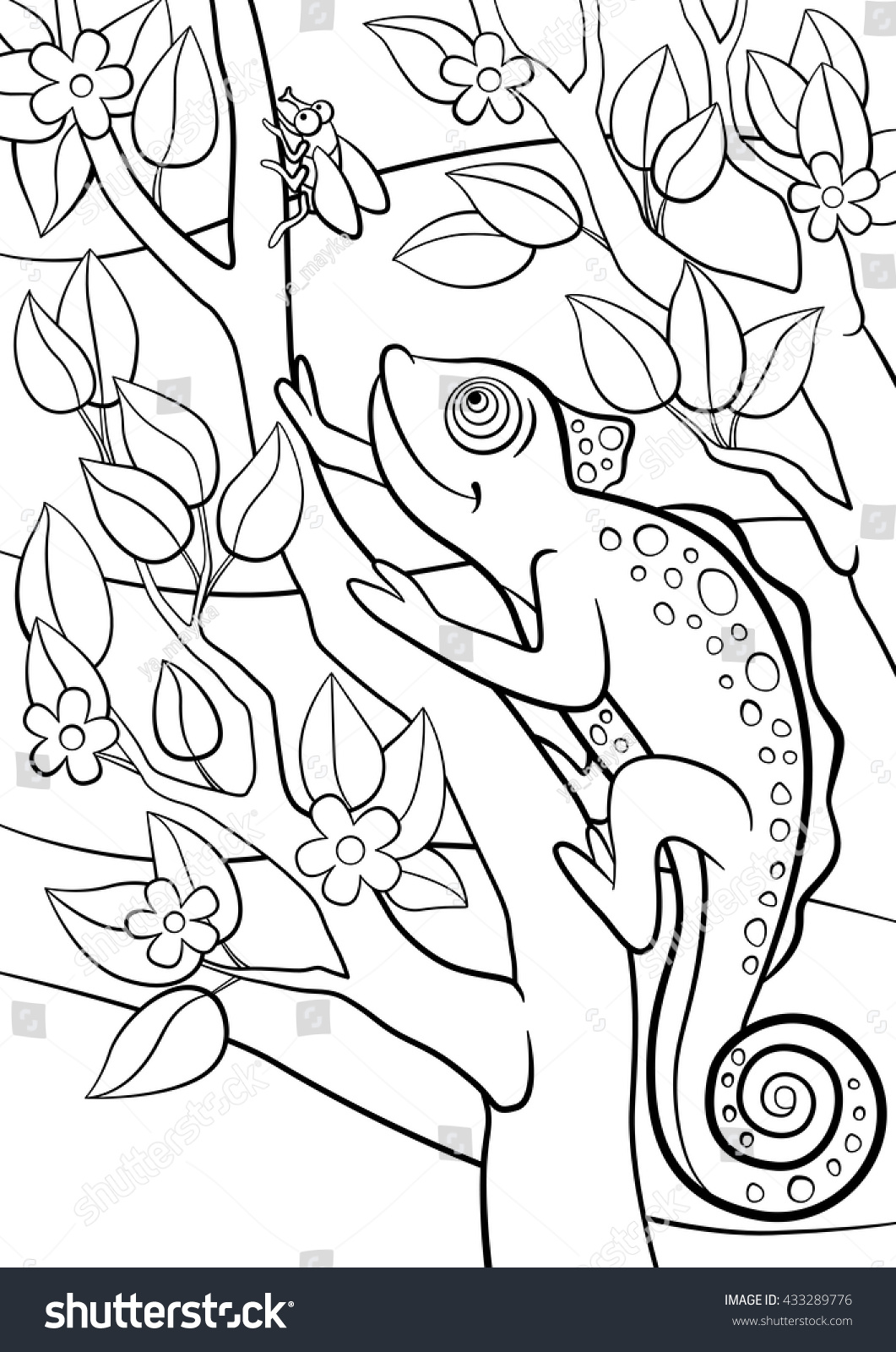 Colouring in pages wild animals - Coloring Pages Wild Animals Little Cute Chameleon Sits On The Tree Branch And Looks