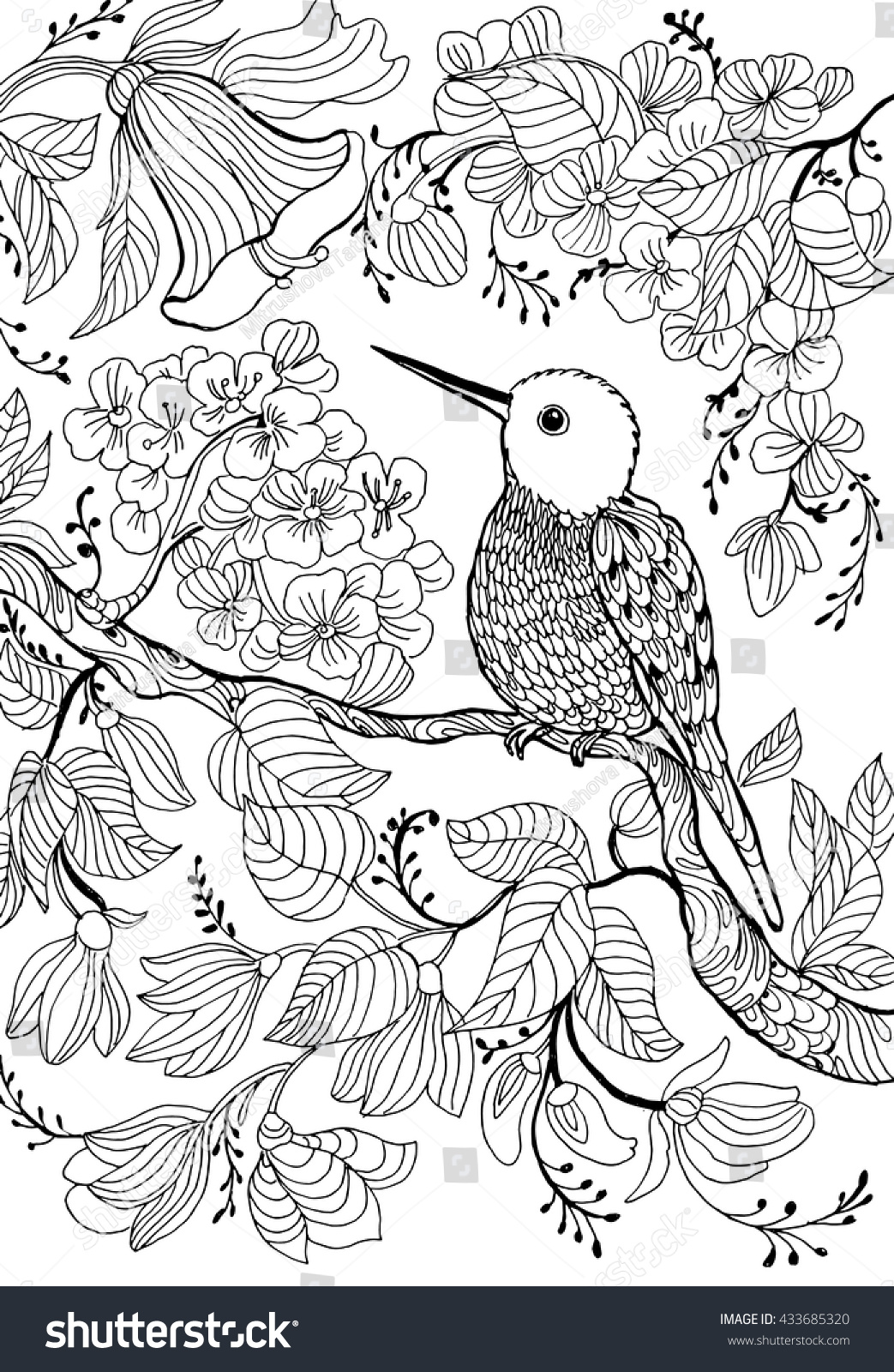hummingbirds and flowersoutline drawingcoloring circling line drawingmonochrome - Hummingbird Flower Coloring Pages
