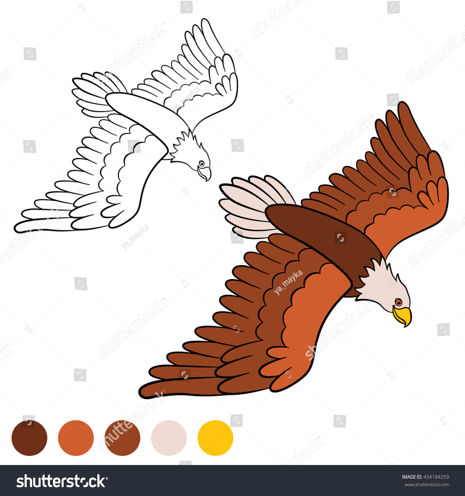 - Coloring Page Cute Bald Eagle Flying Stock Image Download Now