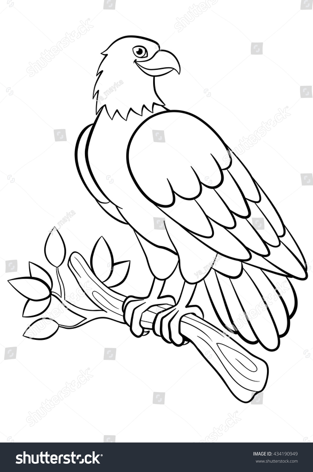 100 bird wings coloring pages carpenter bird coloring pages