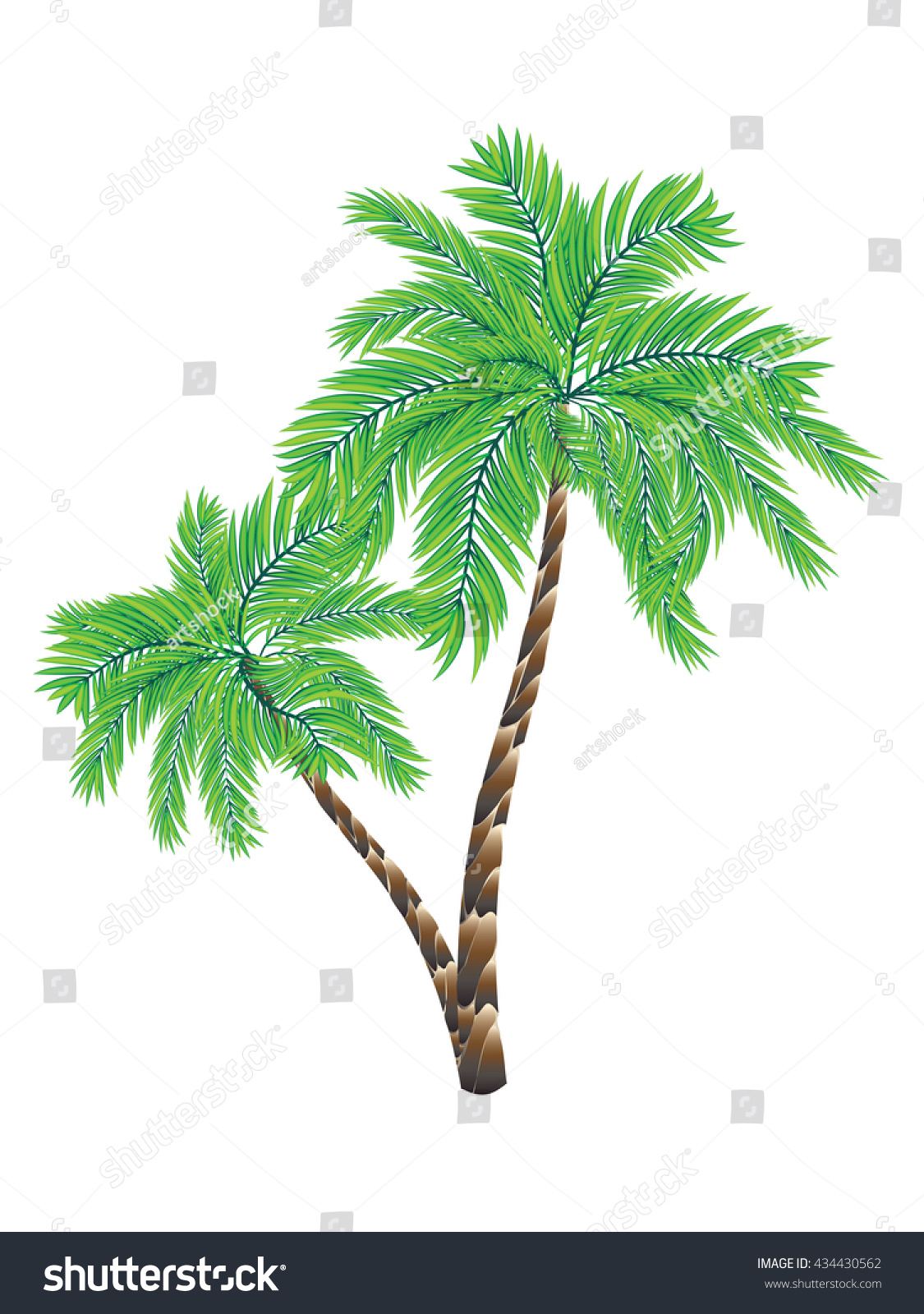 Two Colorful Palm Trees Illustration On Stock Vector HD (Royalty ...