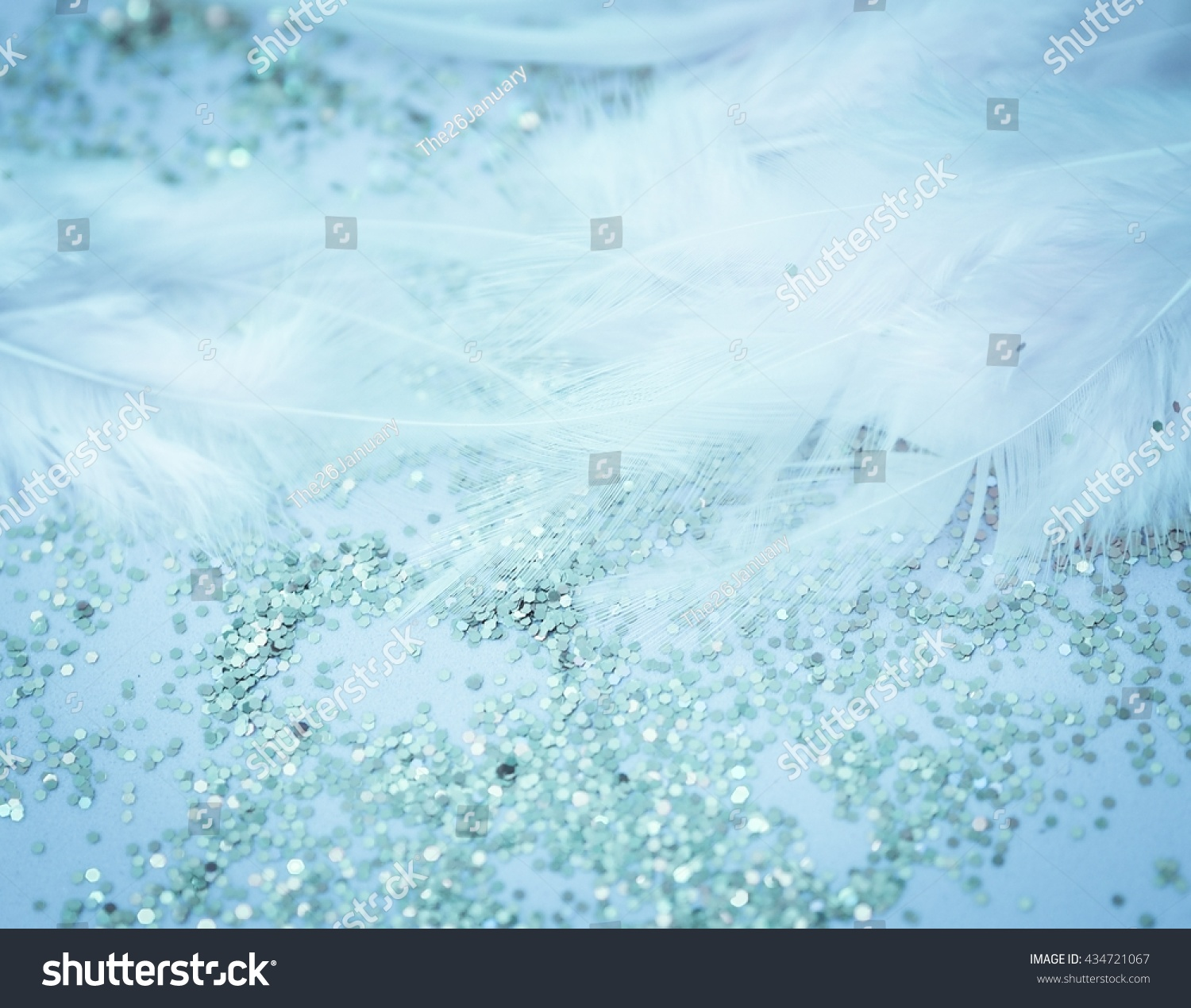 Abstract Glitter Feather Background Aqua Fantasy Wedding And Copy Space