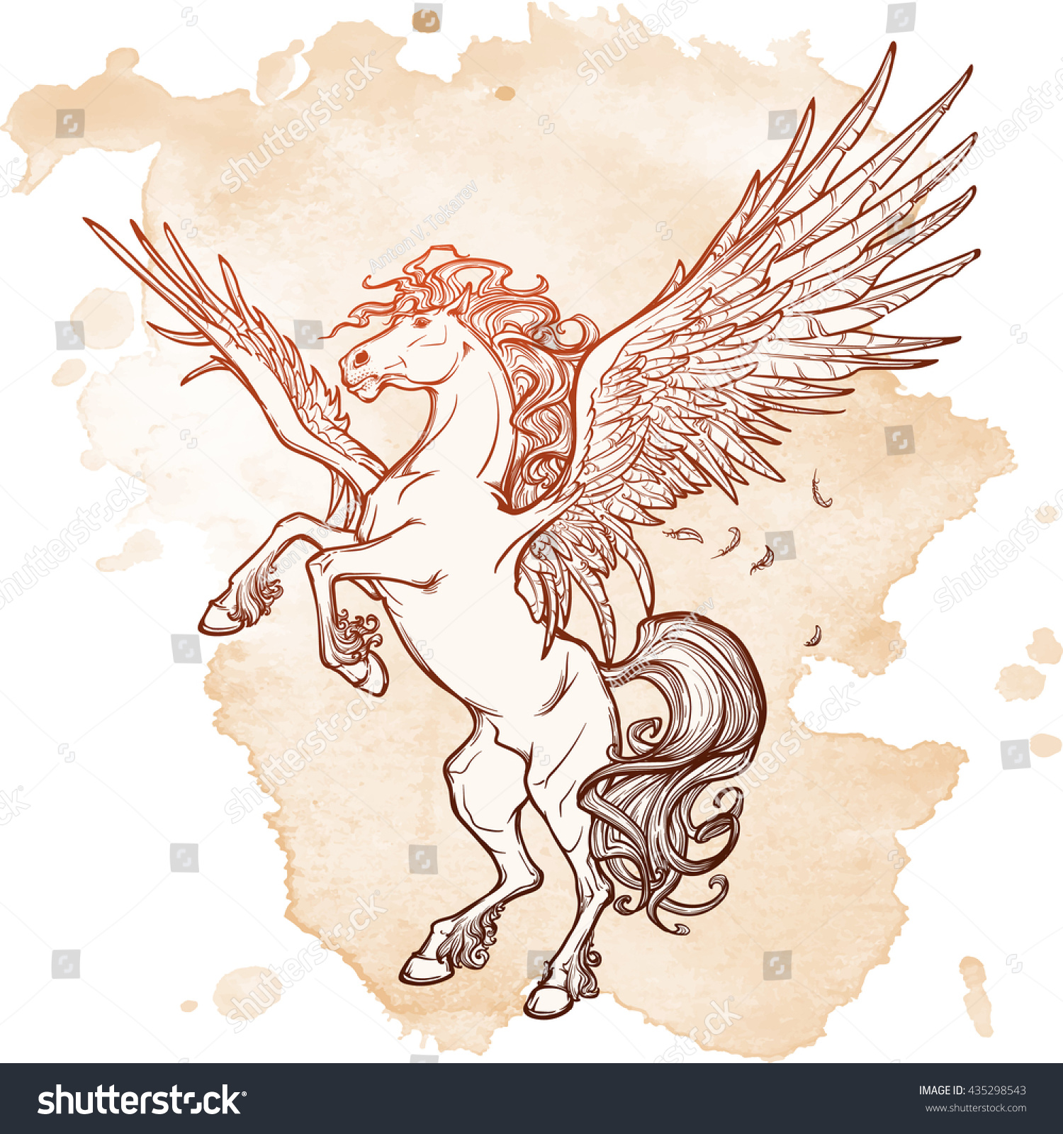 pegasus greek mythological creature legendary beast stock vector