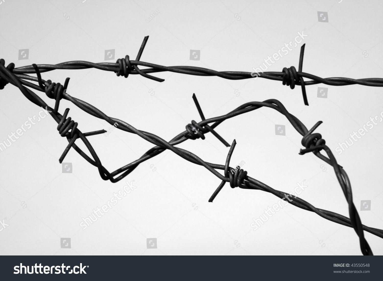 Barbed Wire Black White Symbol Danger Stock Photo 43550548 ...