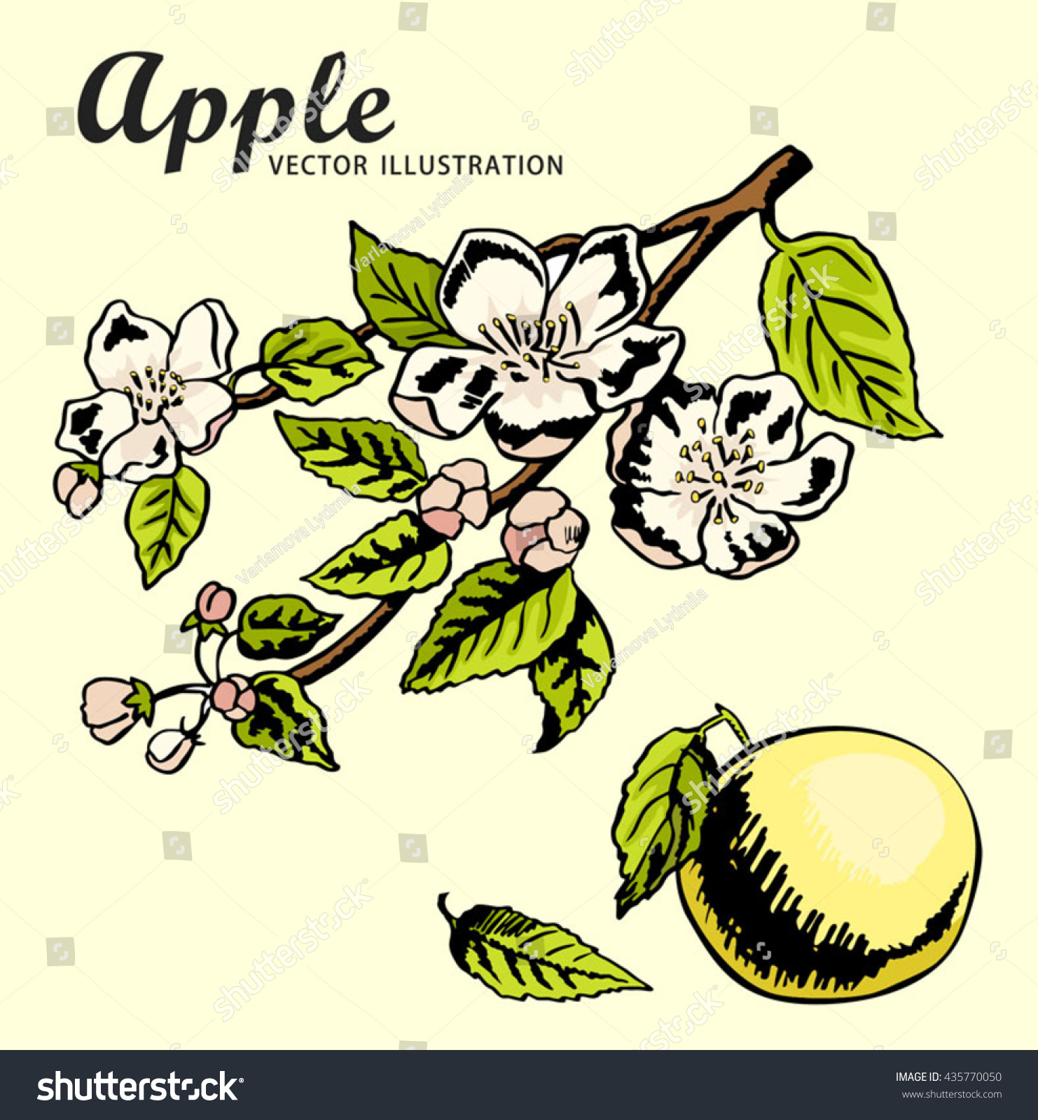 Hand Drawing Apples On Apple Tree Stock Vector 435770050 - Shutterstock
