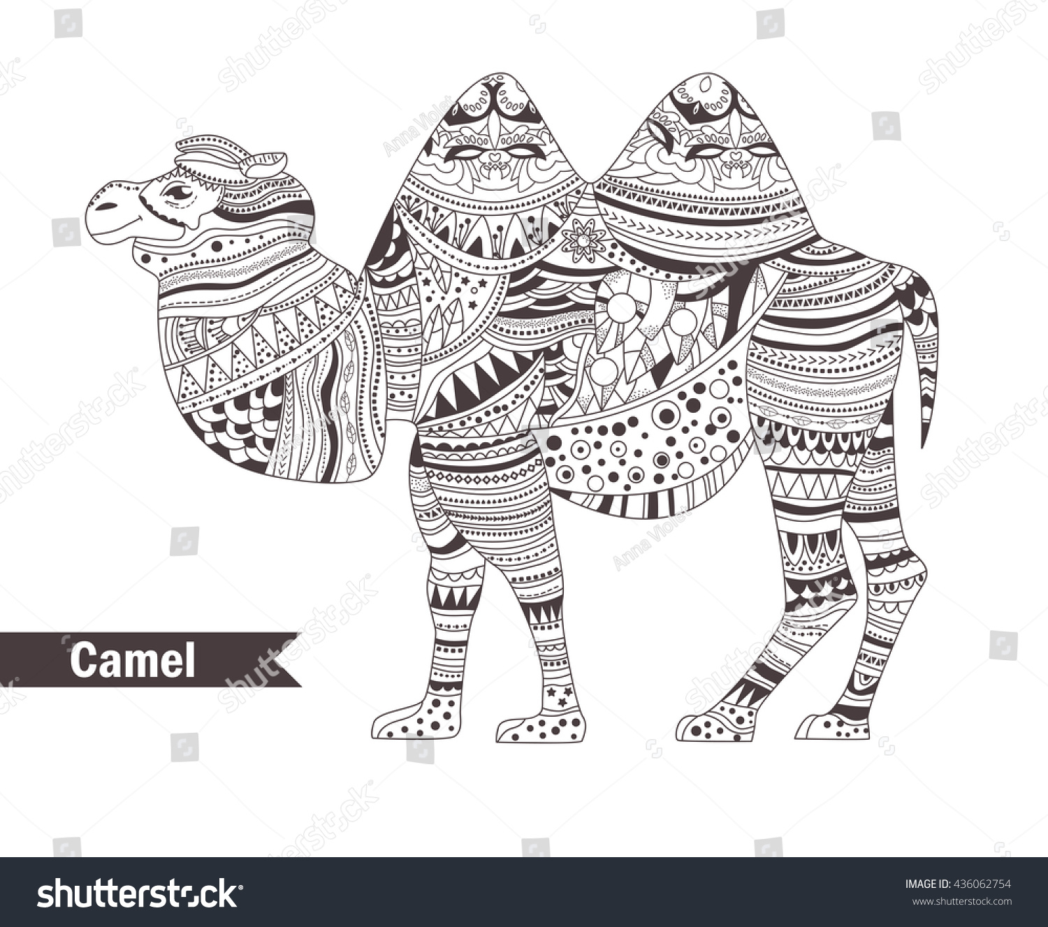 Camel Zentangle Style Coloring Book Adult Stock Vector 436062754