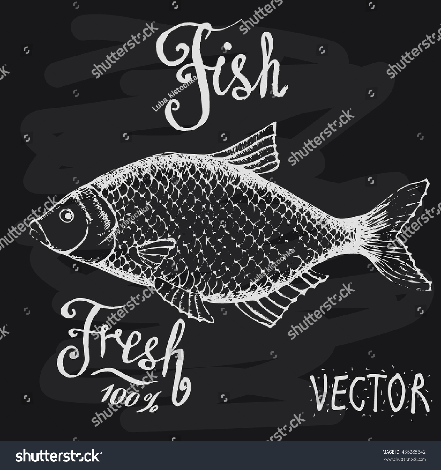 Vector fish sketch drawn chalk on stock vector 436285342 for White river fish market menu