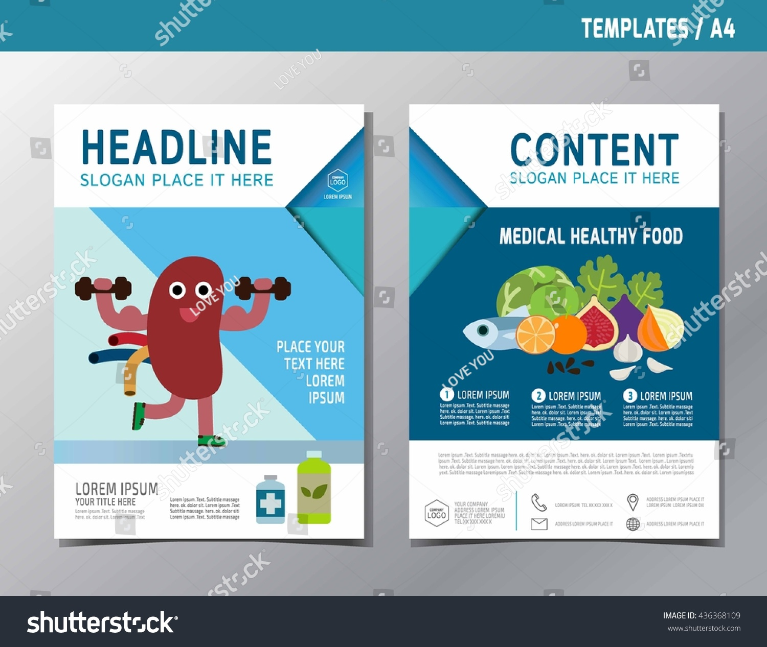 kidney infographic brochure flyer template a4 size ベクター画像素材